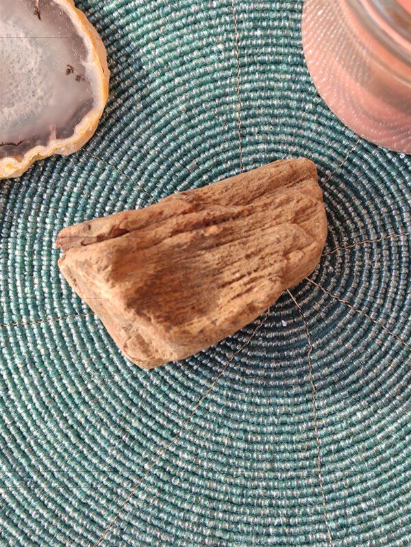 Versteend hout aarden 2